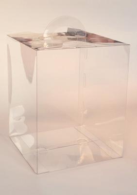 Пластиковая коробочка для моделей многогранников